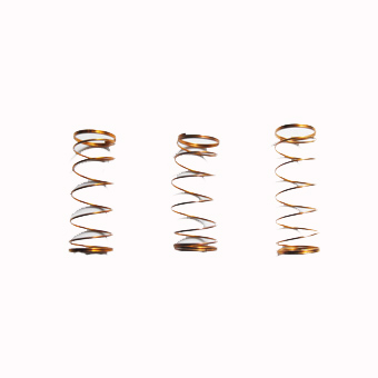 SET OF 3 VALVE SPRINGS FOR BOTTOM SPRUNG HORNS AND CORNETS.