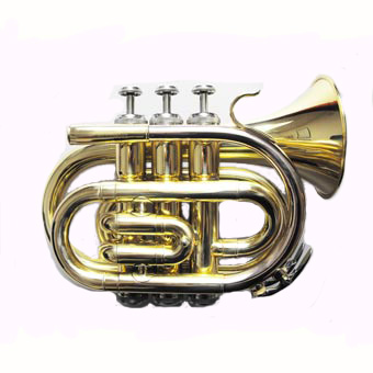 TRT150 Bb Pocket Trumpet in Lacquer RRP £249 NOW £199
