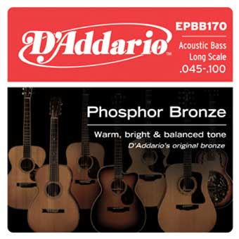 EPBB170 Phosphor Bronze Acoustic Bass - Long Scale - 45-100