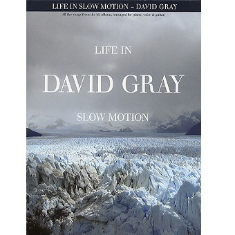 David Gray - Life In Slow Motion PVG